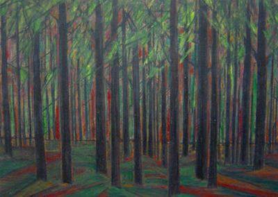 Chevalier-forêt 1955-63 5-004