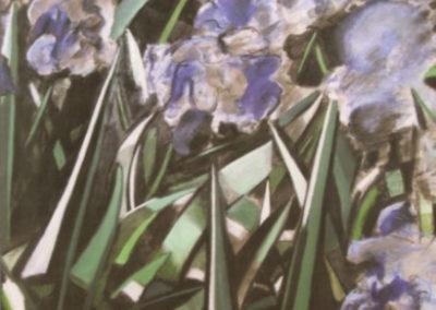 Roll-iris