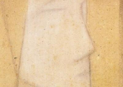 muzehher-autoportrais