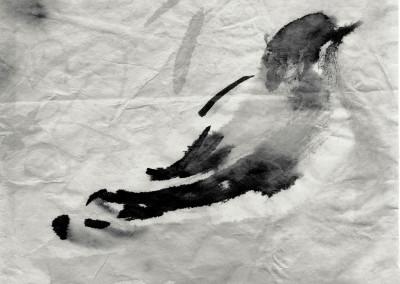oiseau-chinois