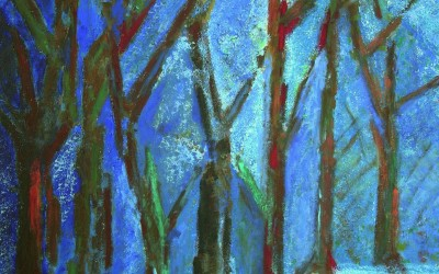 Jahb-Nuit en forêt