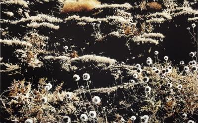 Gölgenin izinde-1, tuval üzeri Akrilboya, 150 x 200 cm