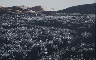 Kral Yolu, tuval üzeri akrilik boya, 90x120 cm, 2009 Kopie