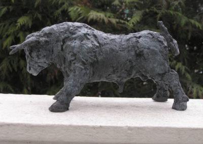 MT-taureau-8