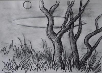 1987 Derrière les arbres Crayon sur papier 37x26cm